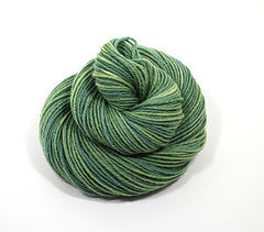 Lemongrass3_small