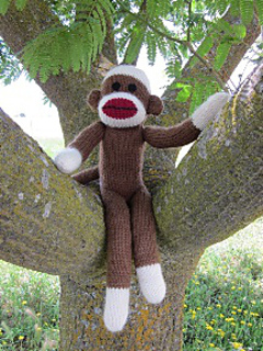 Monkey_in_tree_small2