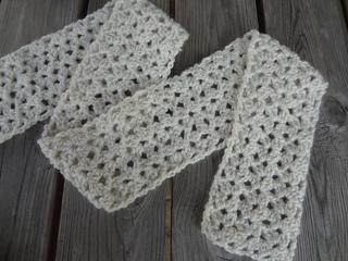 Vanllabeanscarf1_small2