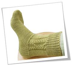 Padua_socks_cover_image_4