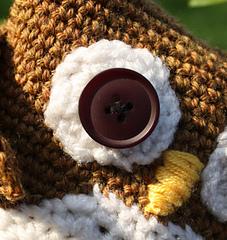 Owl_eye_small