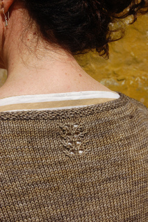 Nape_detail_small2