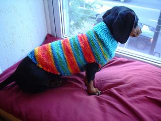 Betasweater_small2
