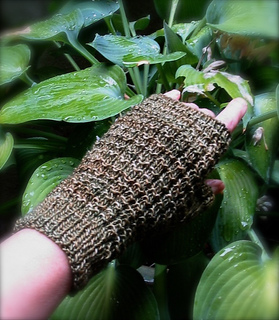 Boxwood_mitt_small2