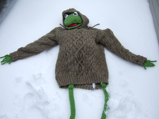 Kermit_models_iain_001_small2