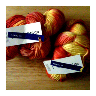 Malabrigo_worsted_in_floral_1_small2