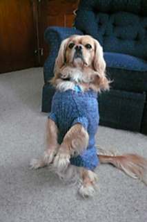Beaussweater_005_small2