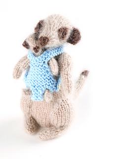 Meerkats129_small_small2