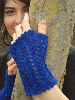 Veronica_s_fingerless_mitts_primary_small2