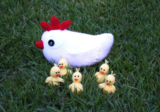 White_loose_chicks_reect_small2