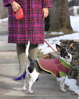 Dog_sweater_junie_kristin_nicholas_small2