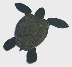 Turtle_small
