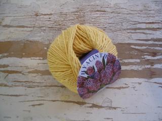 Hyacinth_yellow_small2