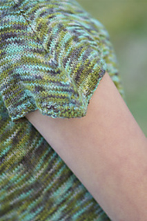 Theme_and_variation_sleeve_small2