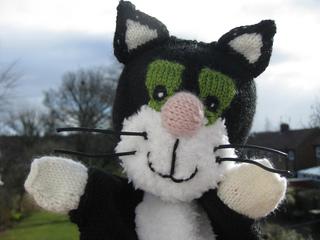 Jessthe_cat_003_small2
