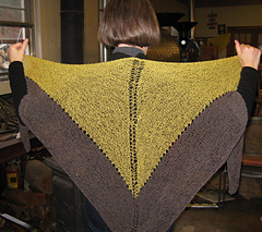 The_perfect_shawl__at_roaster_s_whim_small