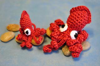 Squid_small2