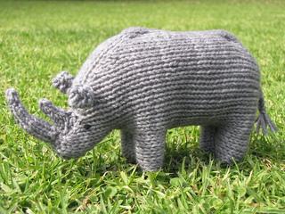 Rhino_photos_0438_small2