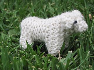Nativity_lamb__sheep_small2