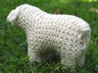 Sheep_3_small2