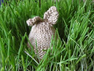 Easter_rabbit_egg_cozy