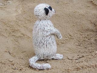 Meerkat1_small2