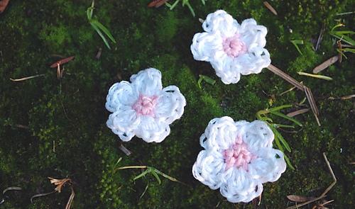 Sakura2_medium