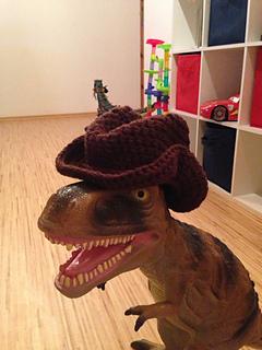 Cowboy_hat_1_small2