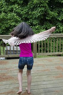 Hawkwings_dsc3824_small2