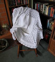 Foliage_lace_shawl_mar_2012_small