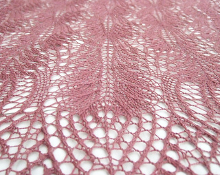 Macro_view_lace2_small2