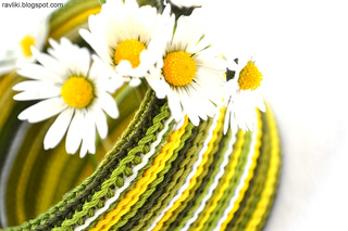 Bosnian_herbal_daisy_small2