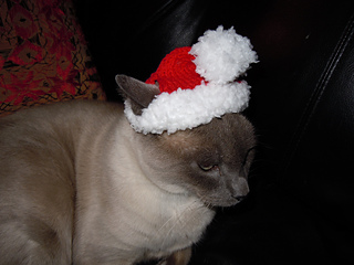 Santa_claws_006_small2