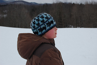 20140224_144312cathat_small2