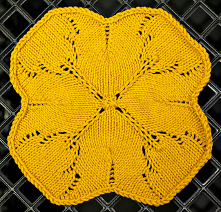 Clover_dish_wash_cloth_dsc7210_small2