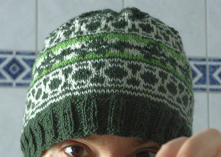 Turtle_beanie2_small2