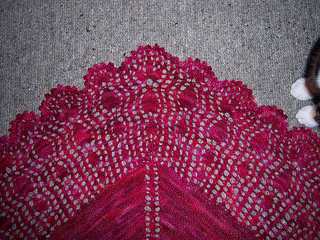 Cleome_shawl_2_small2
