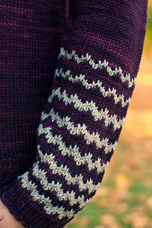 Rhinebeck_sleeve_small2