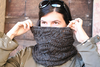 Cowl_110_small2