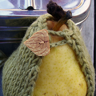 Pear_close_up_small2