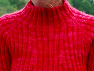 Rubbed_turtleneck_picture