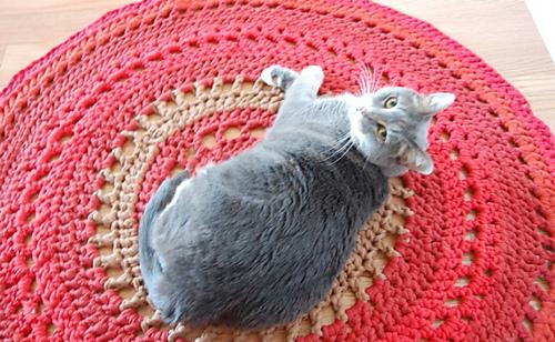 Crochet-rug-650x400_medium