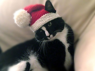 Santa-claws-3_small2