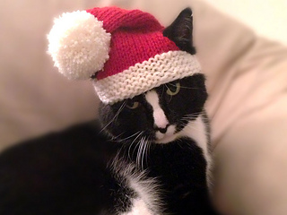 Santa-claws-4_small2