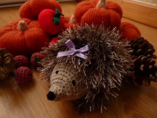 Heidi_hedgehog_small2