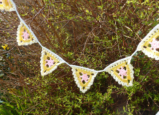 Pretty_lacy_bunting__3__small2